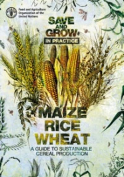 Save and grow in practice a guide to sustainable cereal production thumbnail