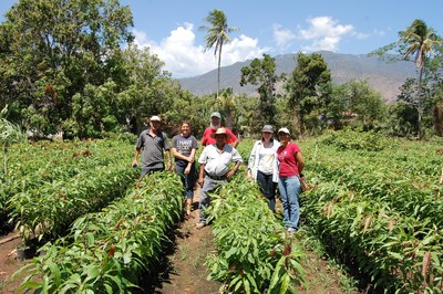 Don Saul's El Palmo Farm in Zacapa 2