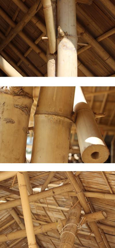 TN #92 Bamboo for Construction | ECHOcommunity org