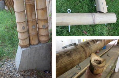 TN #92 Bamboo for Construction   ECHOcommunity org