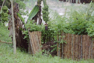 TN #16 Composting structure Honduras
