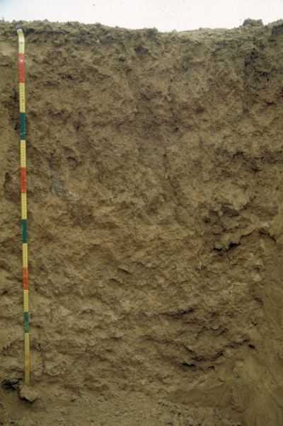 Soils of Mainland Southeast Asia 8