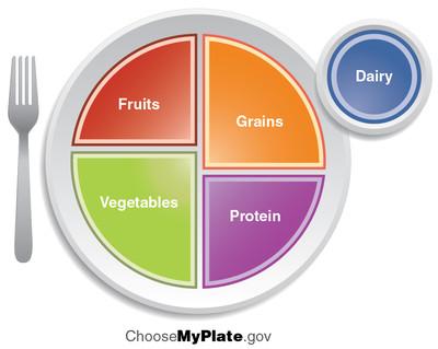 TN 16 USDA Food Groups