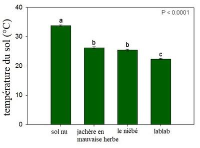 BPN 6 Figure 4b