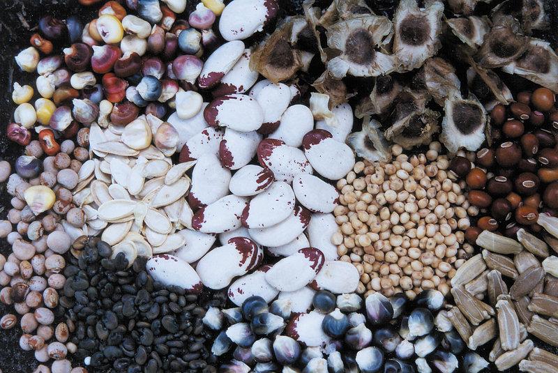 Almacenamiento de semillas |