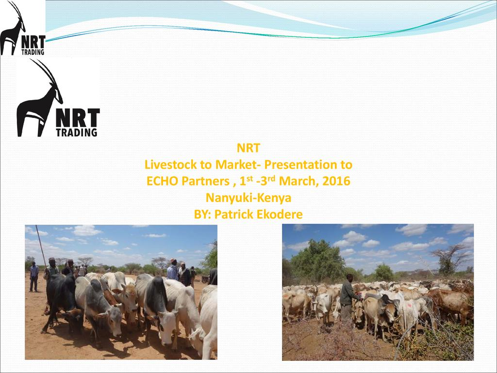 Livestock markets as incentives in conservancy development and rangelands in the landscape
