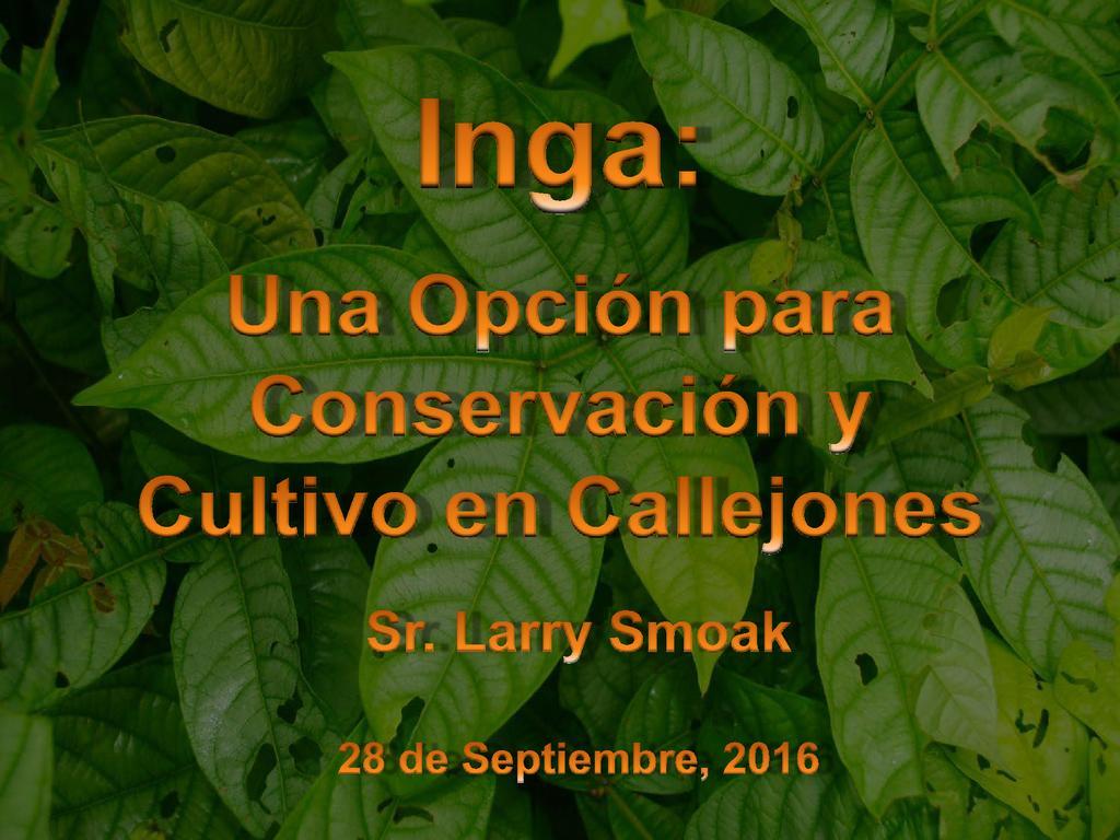 Una Opción para Conservación y Cultivo en Callejones