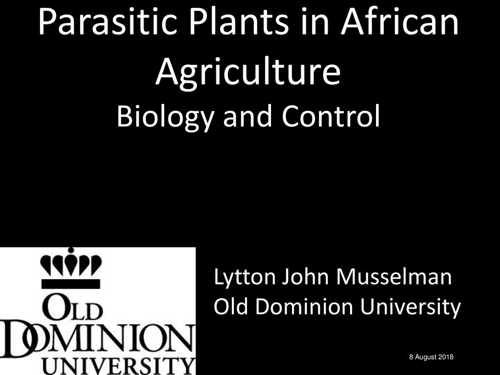 Managing striga weed and other parasitic weeds