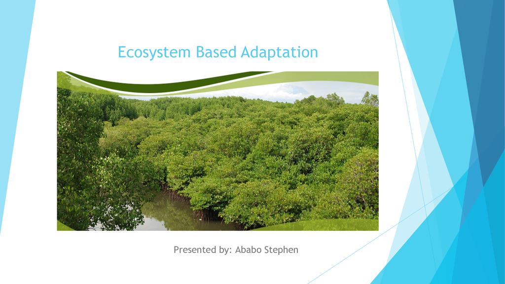 Ecosystem adaptation