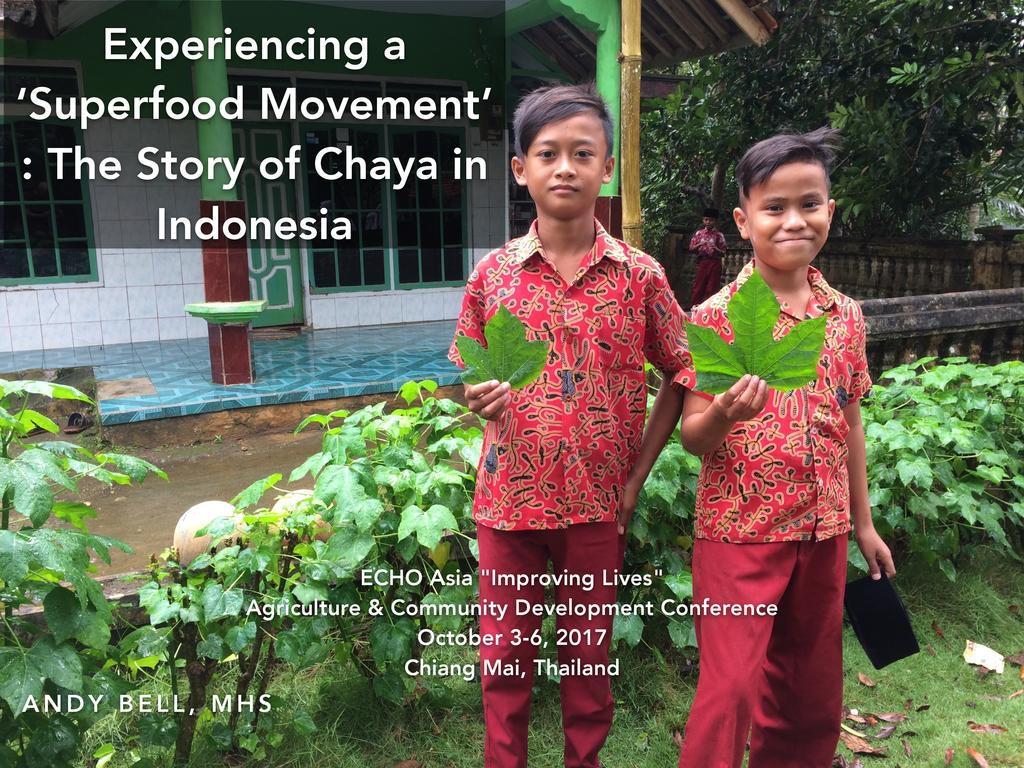 Experiencing a 'Superfood Movement': The Story of Chaya in Indonesia