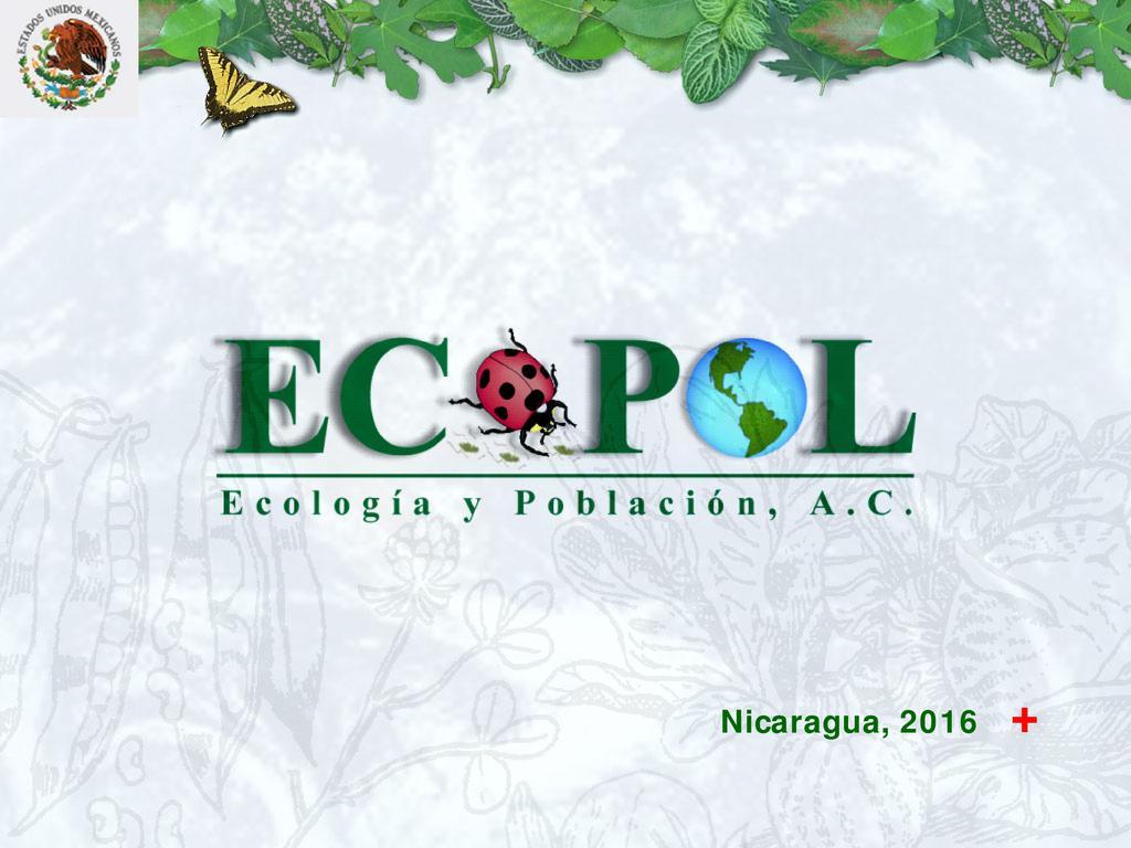 Agricultura orgánica a escala humana, alternativa al CC