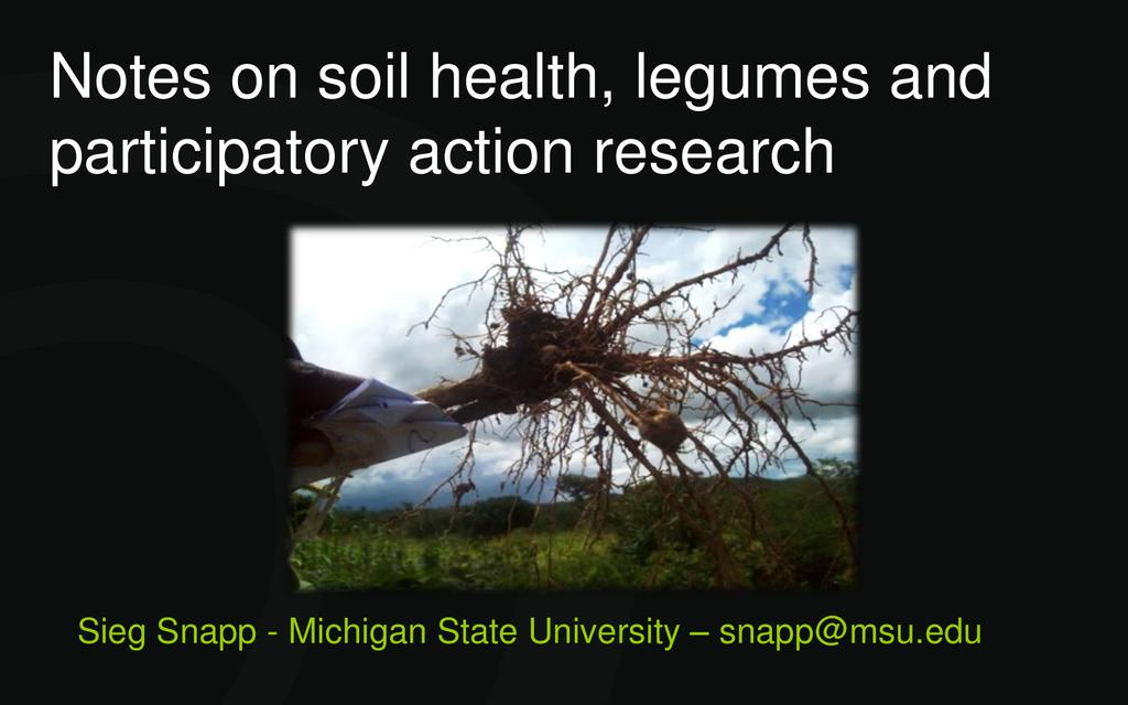 Legumes and soil health – participatory action research