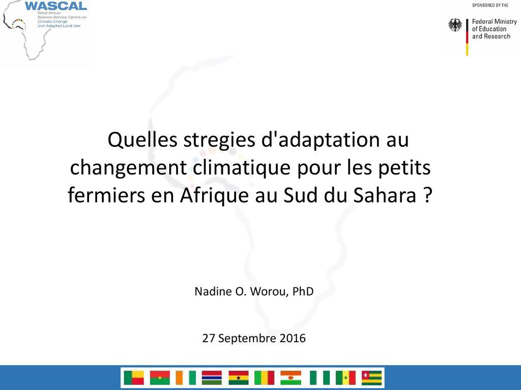 Quelles stratégies d'adaptation aux changements climatiques pour les petits fermiers en Afrique au sud du Sahara?