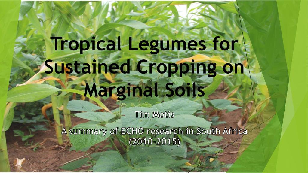 Tropical legumes for sustained cropping on marginal soils