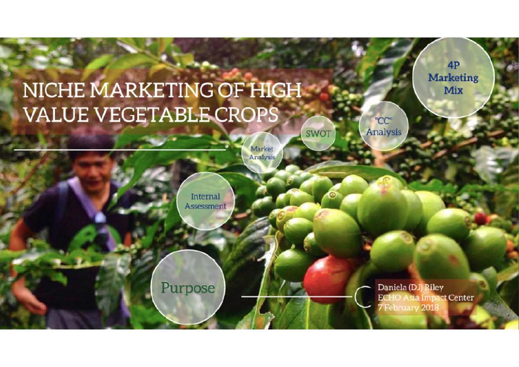 Niche marketing of high value vegetable crops  0