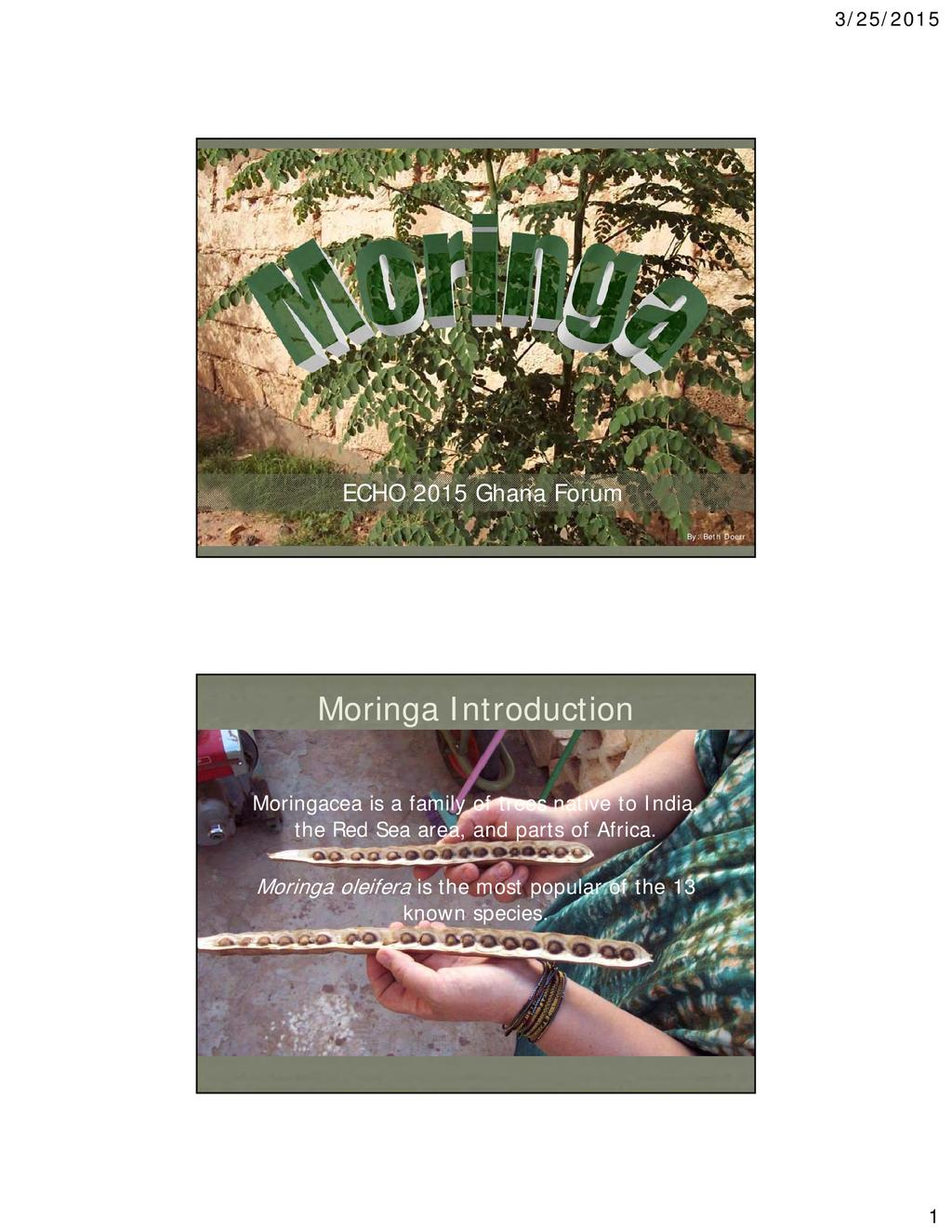Overview of Moringa