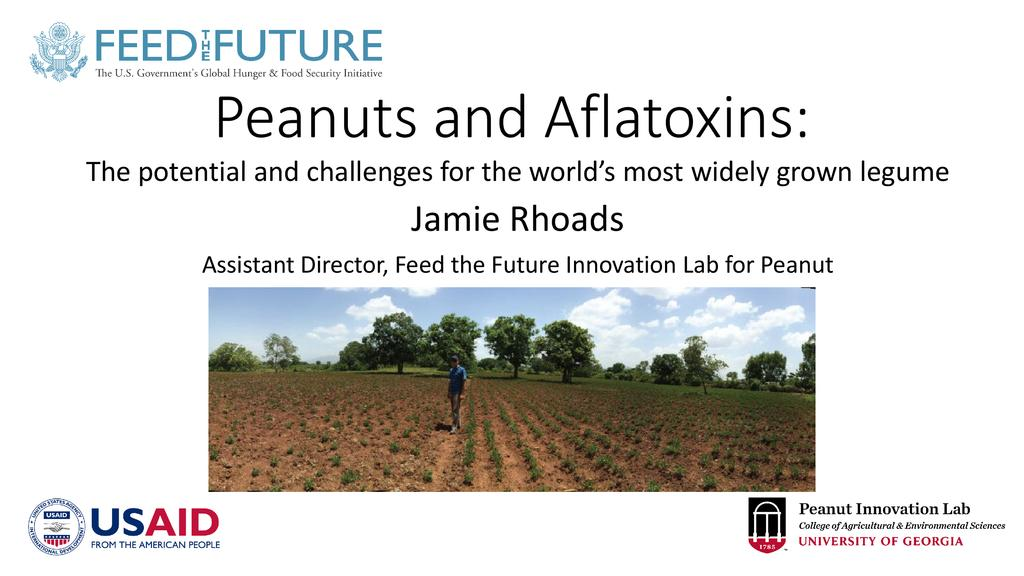 Peanuts and aflatoxin: The potential and challenges for the world's most widely grown legume
