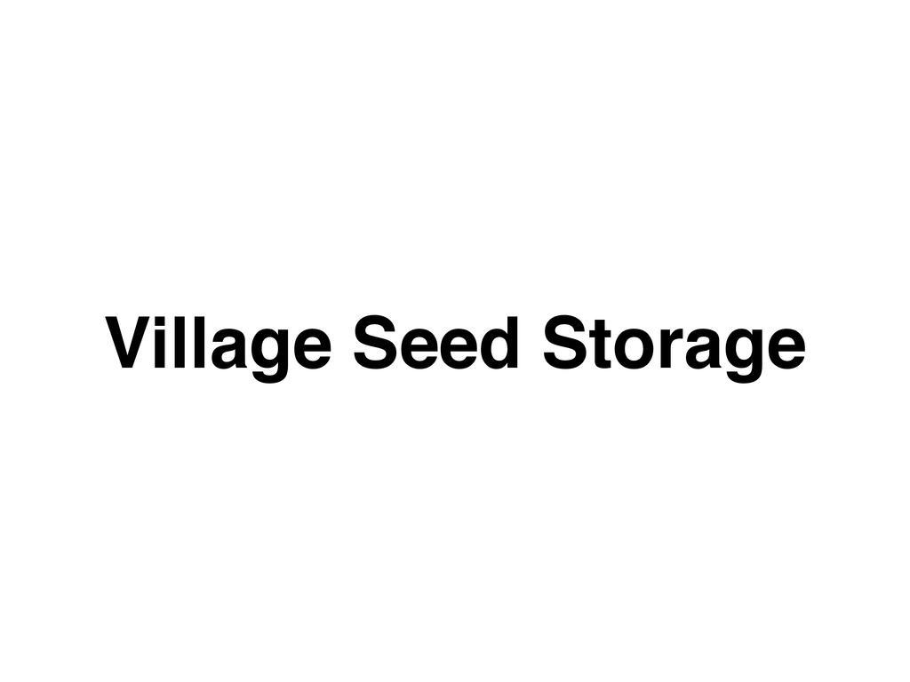 Village Seed Storage
