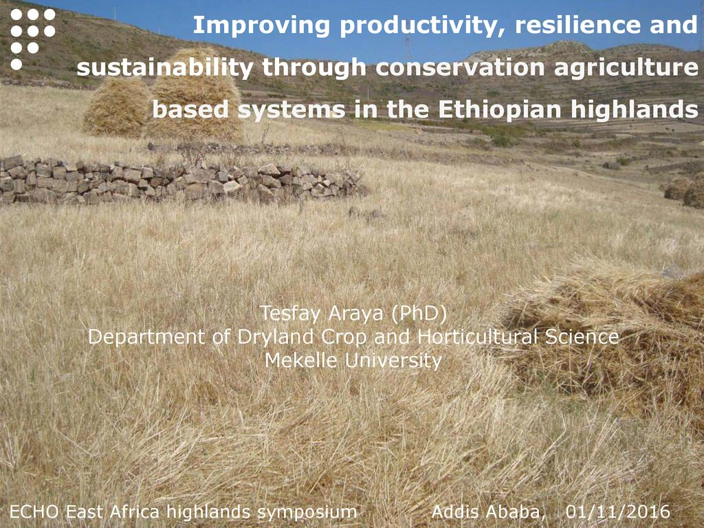 Conservation Agriculture in Ethiopian Highlands