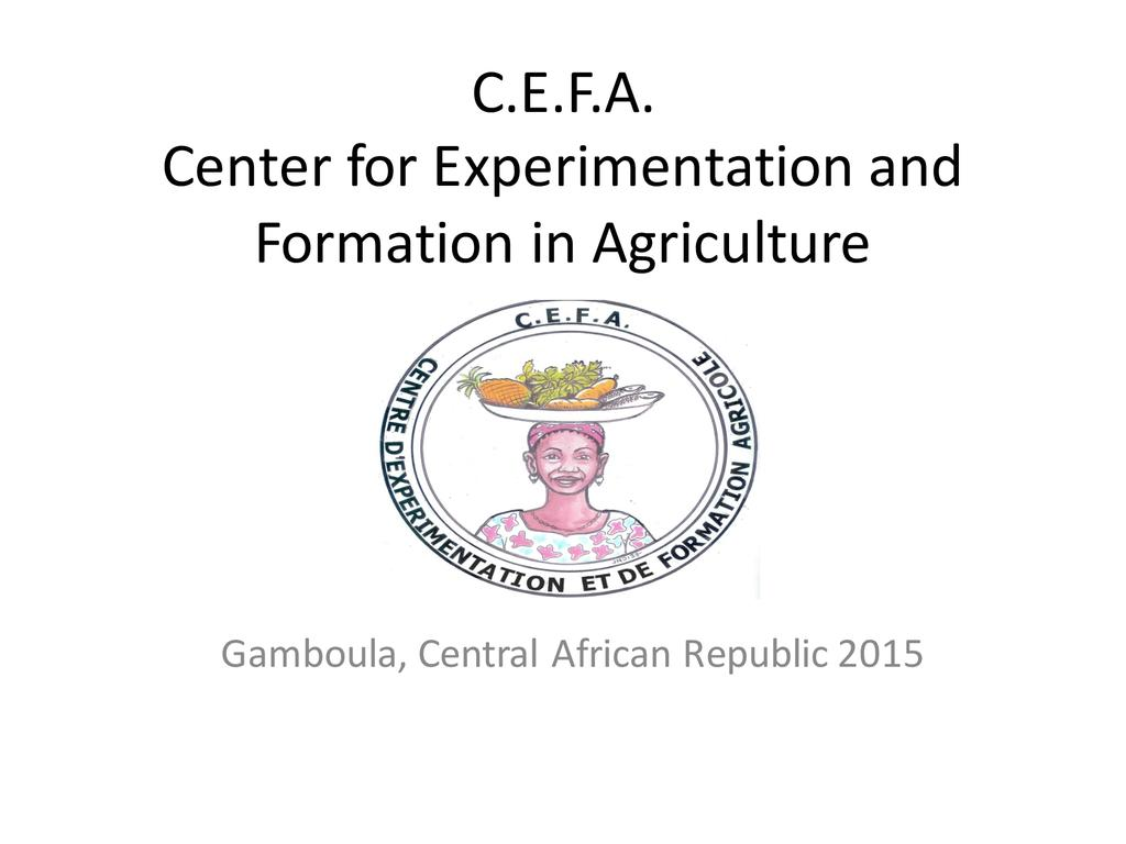 Cefa planting hope in the central african republic  0