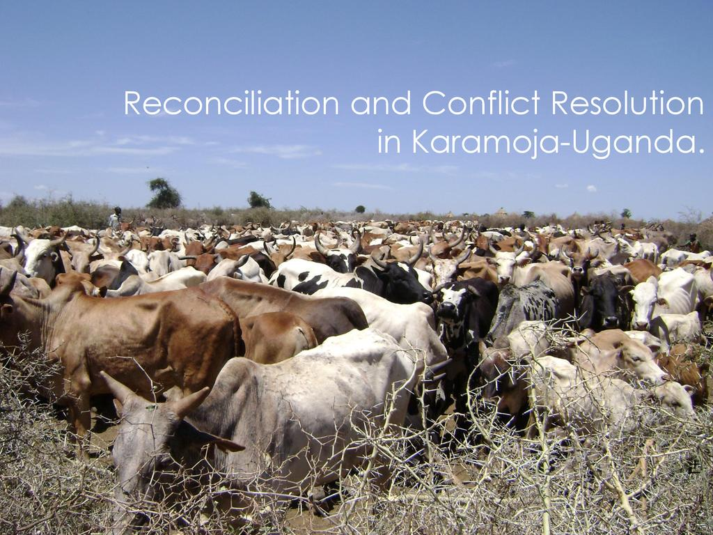 Reconciliation and Conflict Resolution in Karamoja-Uganda