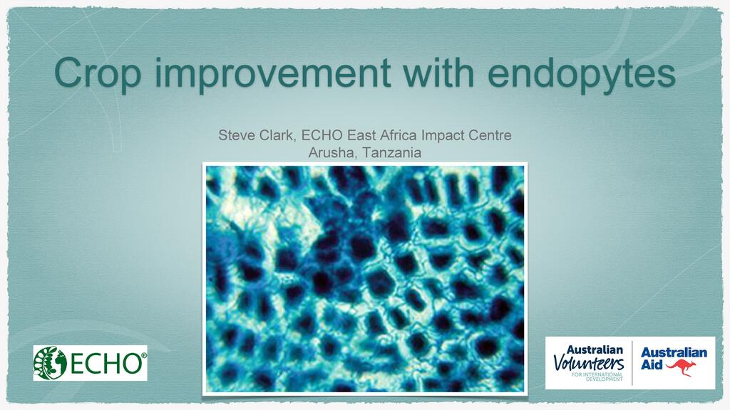 Crop Improvement with Endophyte Symbiosis