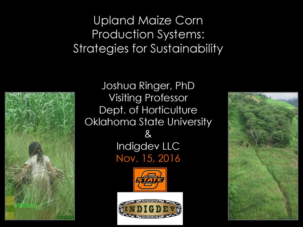 Upland maize production systems: Strategies for sustainability