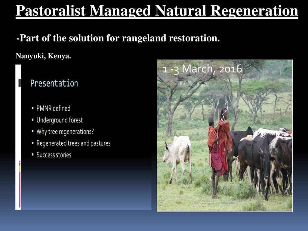 Pastoralist Managed Natural Regeneration
