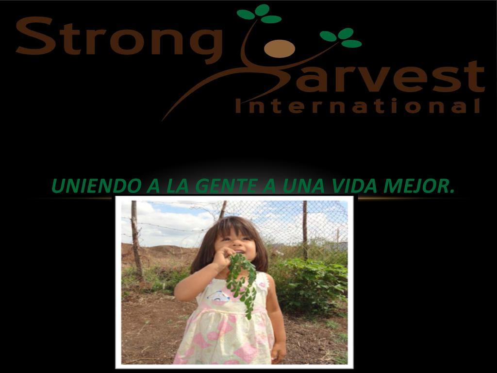 Moringa: Uniendo a la Gente a Una Vida Mejor