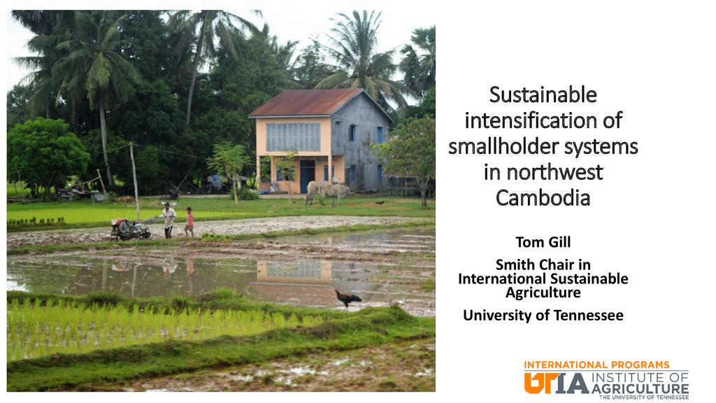 Sustainable intensification of smallholder systems in northwest Cambodia