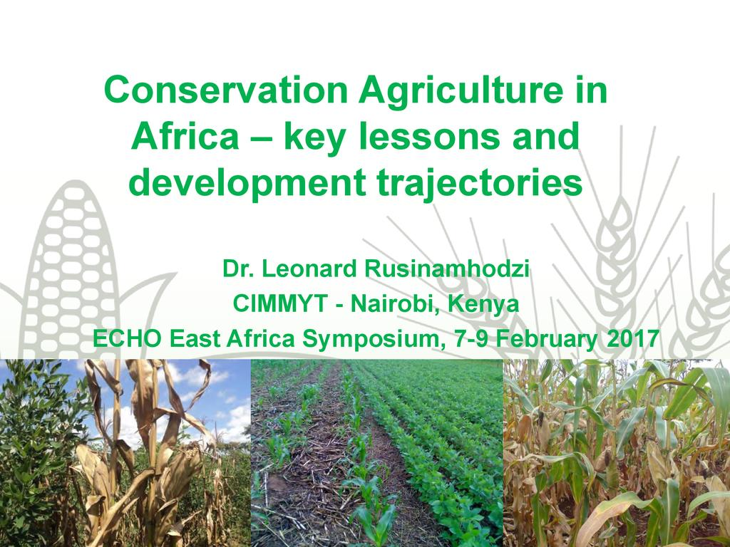 Diversity of Approaches in Conservation Agriculture in Africa