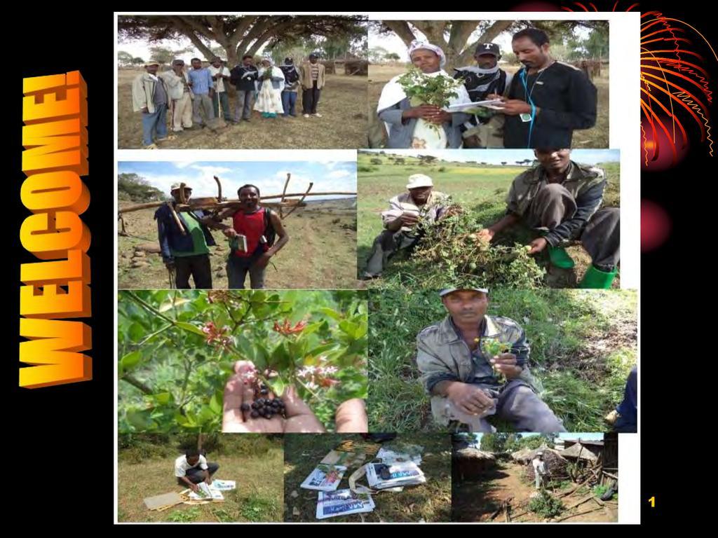 Analysis of Land Restoration Projects - Zewdie Kassa