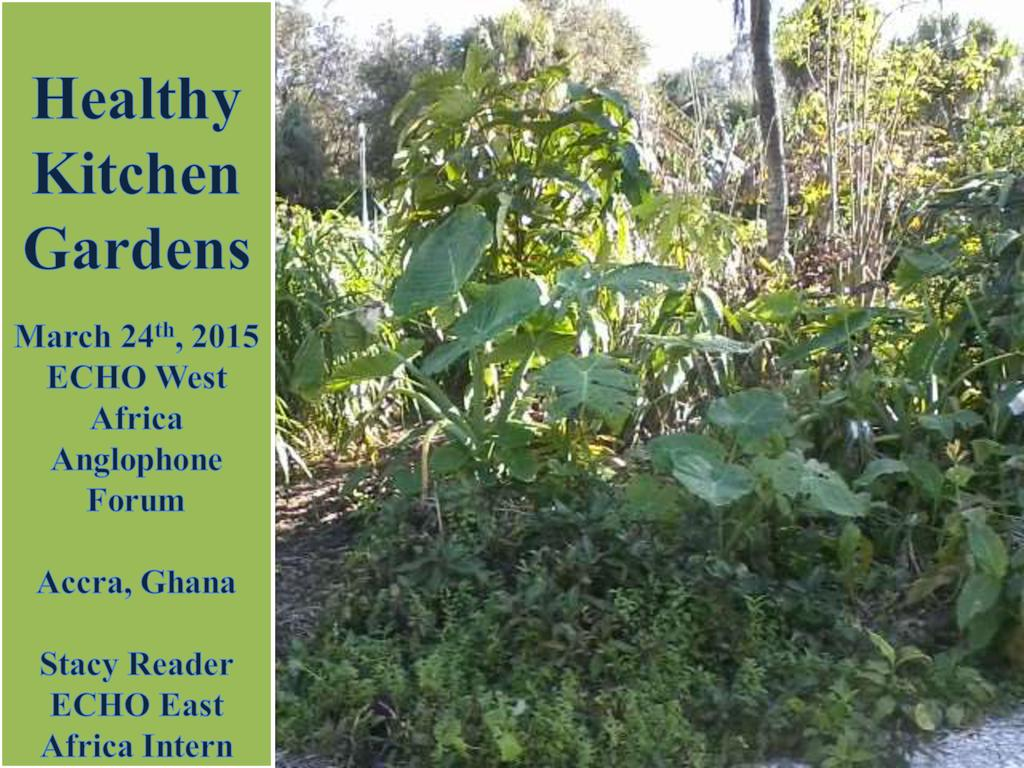 Healthy Kitchen Gardens