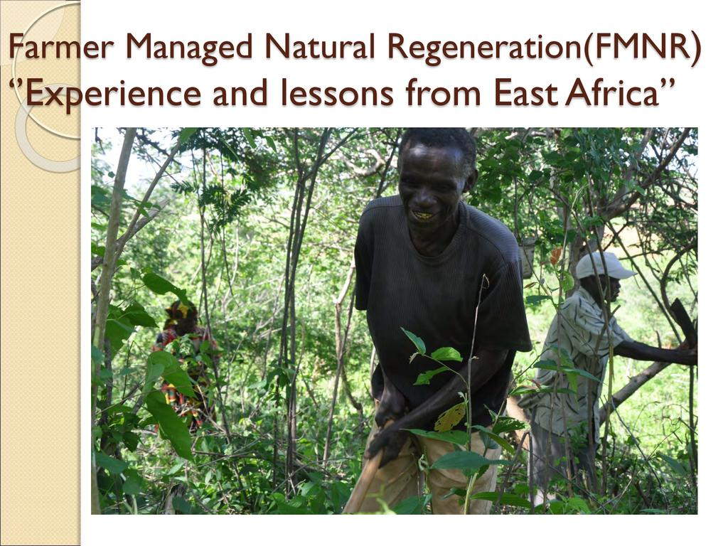 Pastoralist Managed Natural Regeneration