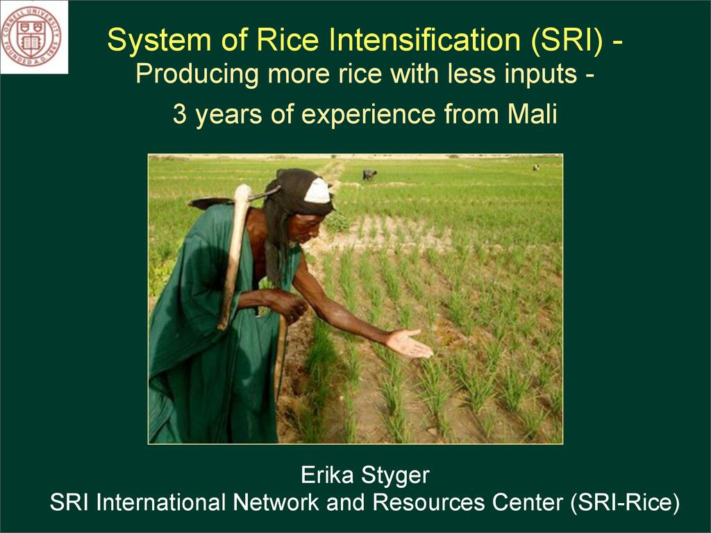 System of Rice Intensification (SRI) - Producing more rice with less inputs - 3 years of experience from Mali