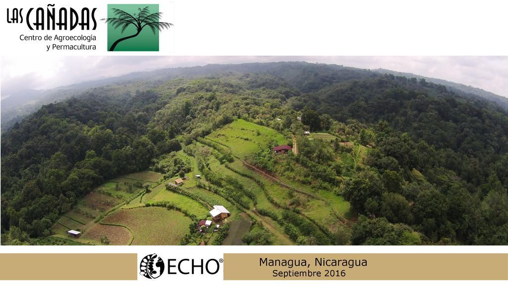 Sistemas Agroecológicos y cultivo de carbono en Las Ca?adas