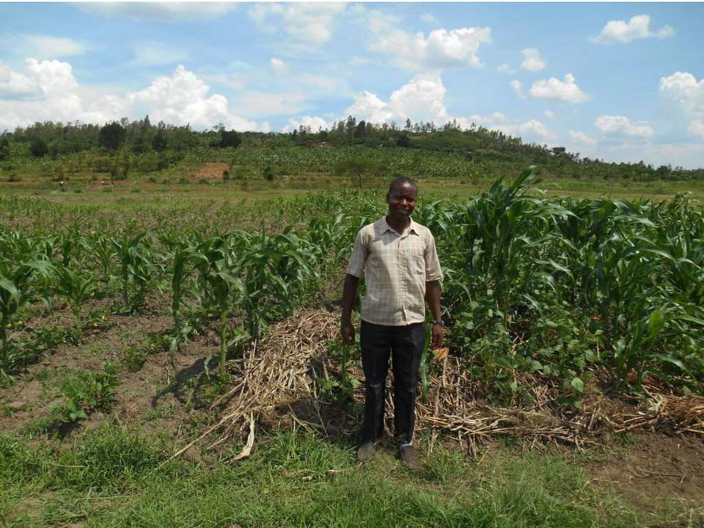 Conservation Agriculture in Rwanda