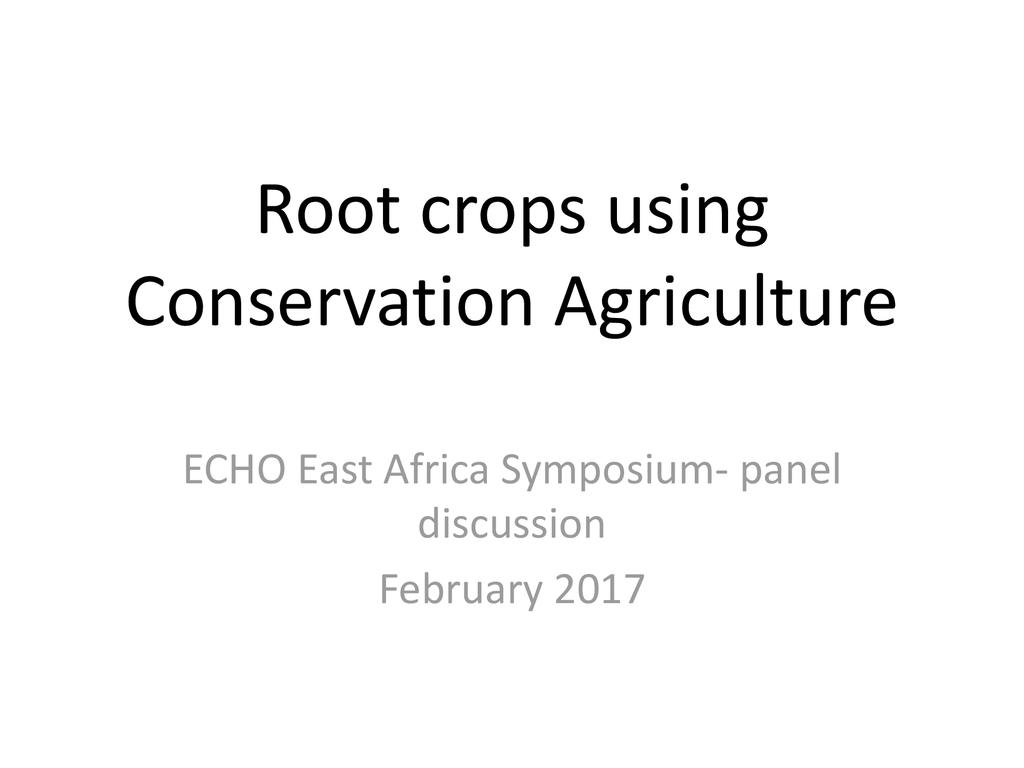 Root Crops Using Conservation Agriculture