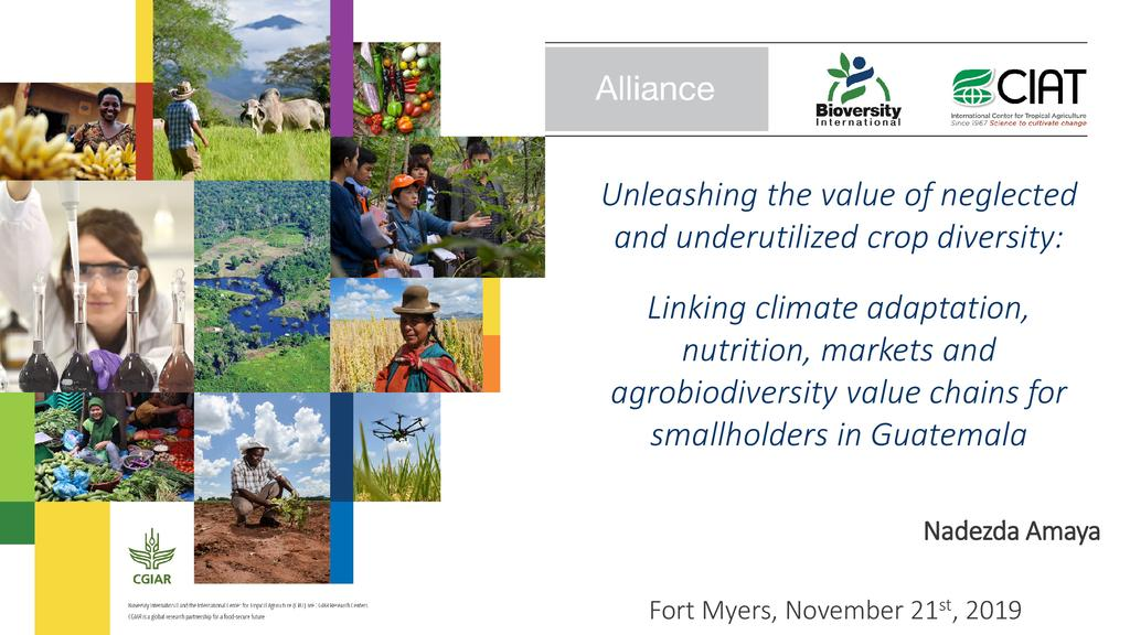 Unleashing the value of neglected and underutilized crop diversity: Linking climate adaptation, nutrition, markets, and agrobiodiversity value chains