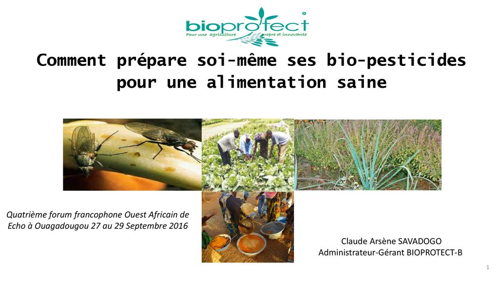 Comment préparer soi-même ses bio-pesticides pour une alimentation saine