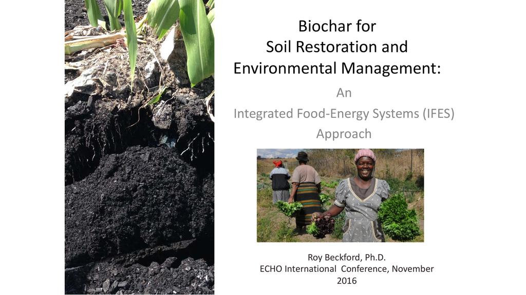 Biochar for soil restoration and environmental management: An integrated food-energy systems approach