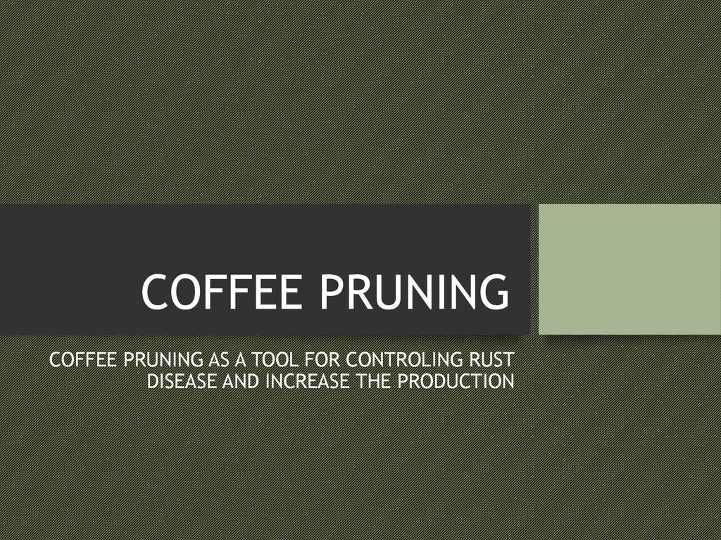 Coffee Pruning and Management