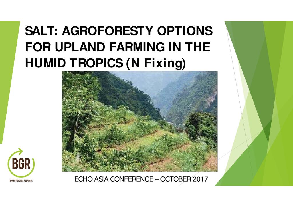 SALT: Agroforestry Options for Upland Farming in the Humid Tropics