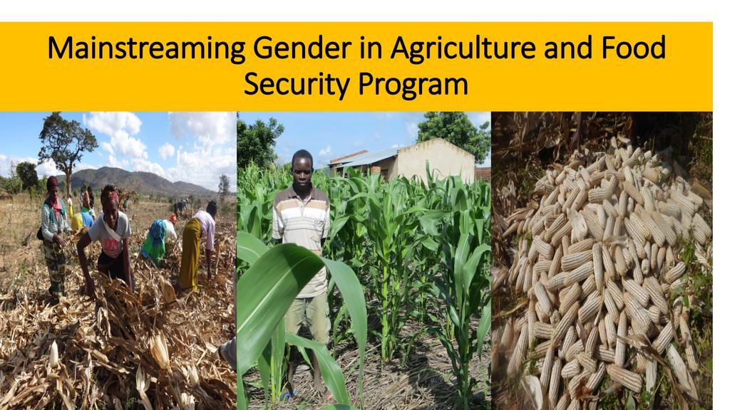 Mainstreaming Gender in Food Security Programs