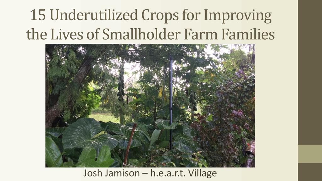 15 underutilized crops for improving the lives of smallholder farm families