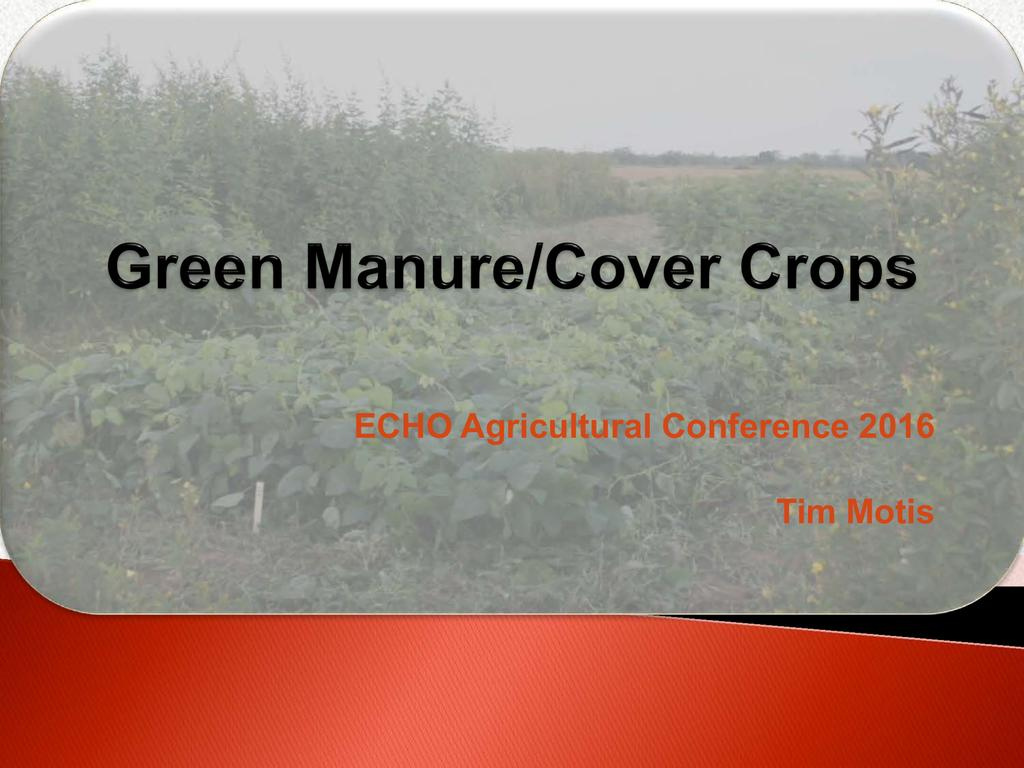 Green manure/cover crops