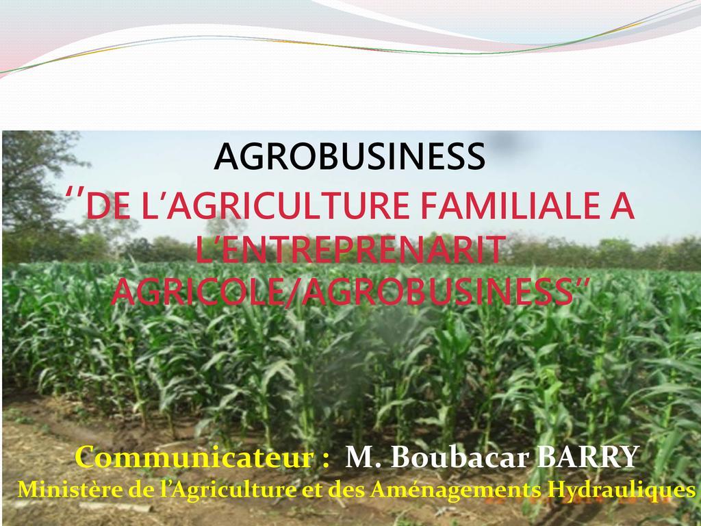 L'agrobusiness