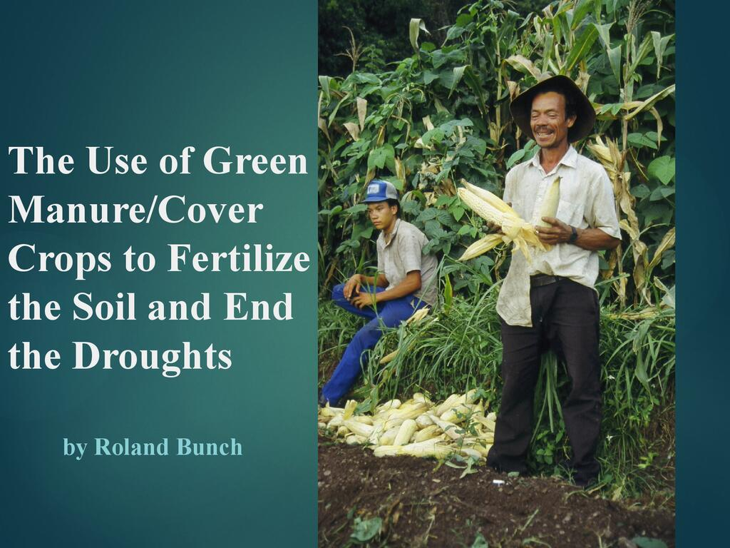 Green Manure/Cover Crops: the simplest and cheapest route to achieving adequate nutrition