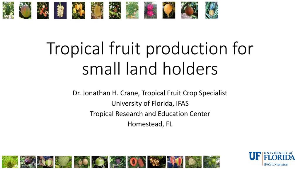 Tropical and subtropical fruit crops for small to moderate farm holdings