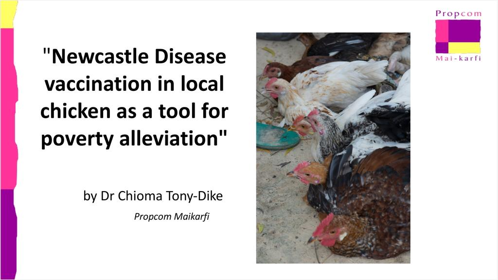 Newcastle Disease vaccination in local chicken as a tool for poverty alleviation